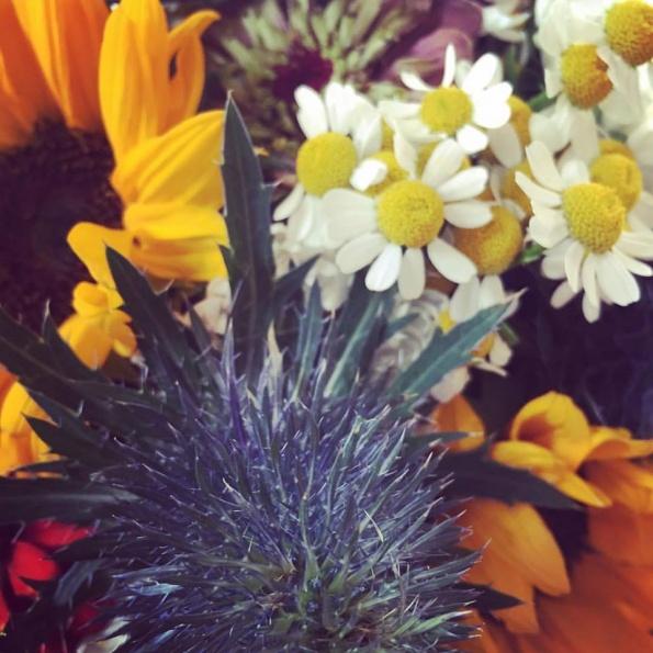 Viele Blumen